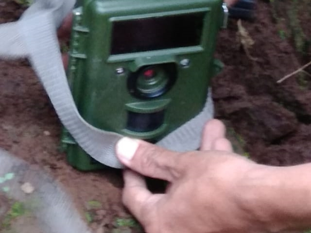 Kamera jebakan dan umpan yang dipasang di kawasan penangkaran Coban Jahe. Foto: Istimewa