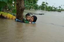 13.792 Hektare Tanaman Padi di Sulsel Terdampak Banjir