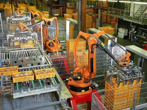25% Pekerjaan Terancam Tergantikan Robot