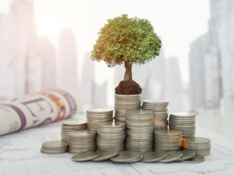 Generasi Milenial Sokong Pertumbuhan Investor Lokal