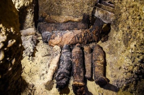 50 Mumi 'Keluarga Elite' Ditemukan di Mesir