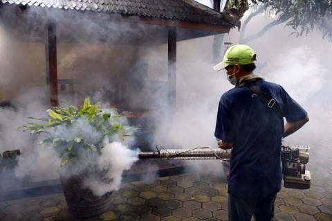 Pemkot Makassar Gencarkan Fogging Tekan Kasus DBD