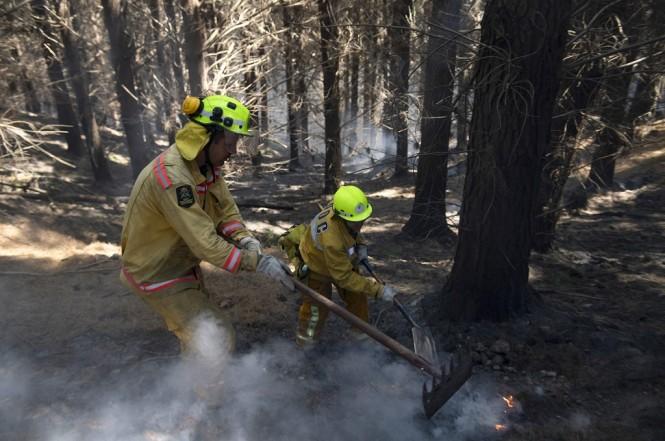 Petugas berusaha memadamkan kebakaran hutan di dekat kota Nelson, Selandia Baru, 8 Februari 2019. (Foto: AFP/NEW ZEALAND DEFENCE FORCE/CHAD SHARMAN)