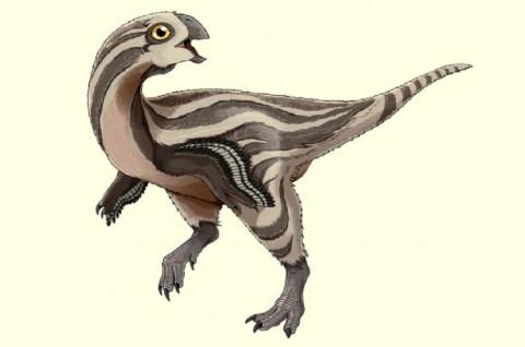 Dinosaurus 'Saudara Jauh' Raptor Ditemukan di Mongolia