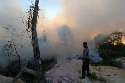 Kebakaran Hutan di Riau Meluas