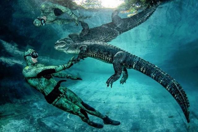 Tur 'gila' dengan aligator? Kenapa tidak. Bersama sang ahli Chris Gillette, adrenalin Anda ditantang semaksimal mungkin. (Foto: Dok. Instagram Chris Gillette/@gatorboys_chris)