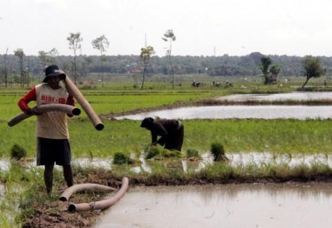 Pembangunan Infrastruktur Harus Menyebar ke Pedesaan