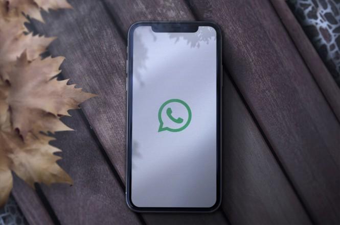 Begini cara untuk menghentikan WhatsApp mengunduh foto secara otomatis.