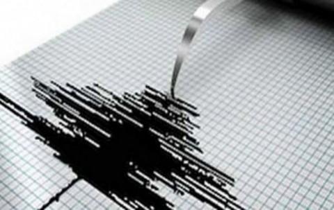 Gempa di Ternate Akibat Sesar Lempeng Laut Maluku