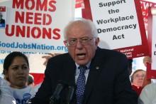 Bernie Sanders Kembali Calonkan Diri untuk Pilpres 2020