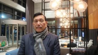 Luhut Jengkel Jokowi Dibilang Bohong