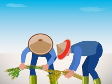 GDP in Agriculture Sector Continues to Increase