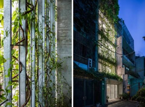 'Rumah Bernapas,' Inspirasi Desain Hunian di Kawasan Padat