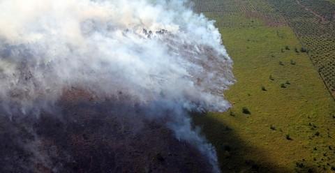 Asap Karhutla di Riau Capai Perbatasan Sumut