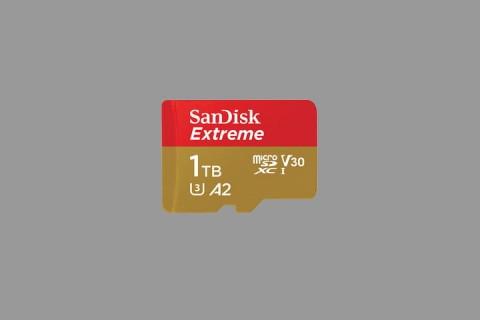 Western Digital Pamer MicroSD 1TB, Kecepatan 160MBps