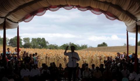 Jokowi: Ekspor untuk Jaga Stabilitas Harga Jagung