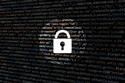 Alat Keamanan Siber Baru Ini Bekerja Bekerja ala Google Search