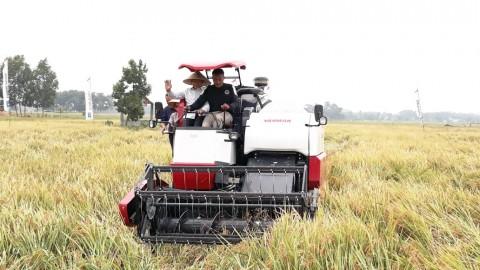 Pupuk Berbasis Organik Tingkatkan Produktivitas Pertanian