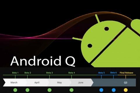 Google akan Rilis 6 Versi Android Q Beta
