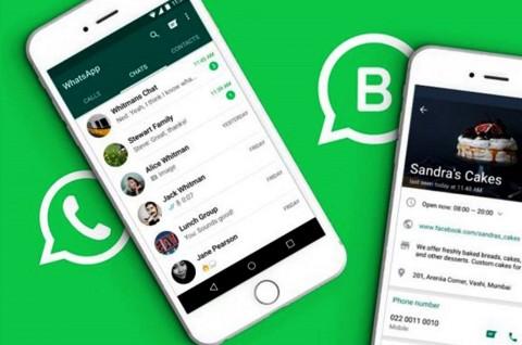 WhatsApp Versi Bisnis Masuk iOS