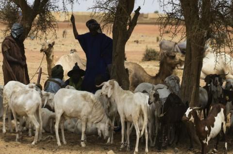 Lebih dari 100 Warga Mali Dibunuh Kelompok Bersenjata