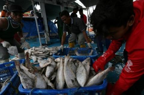 Taraf Hidup Nelayan Ditingkatkan