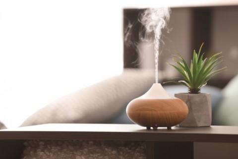 Cara Alami Bebaskan Rumah dari Bau