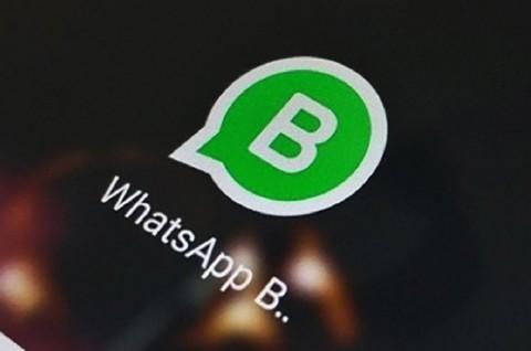 WhatsApp Business untuk iPhone Sudah Ada di Indonesia