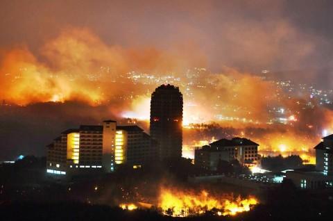 Kebakaran Hutan, Korsel Deklarasikan Bencana Nasional
