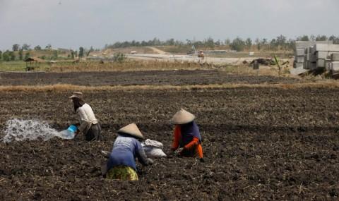 BPS: Upah Riil Buruh Tani Turun 0,16%