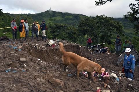 Longsoran Lumpur di Kolombia Tewaskan 19 Orang