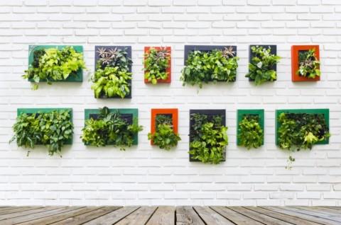 Desain Taman Bunga Gantung  inspirasi taman gantung di rumah minimalis medcom id