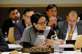 We Must Build, Cultivate and Nurture Peace: FM Retno