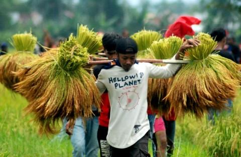 Pakar: Pertanian Masih Menjadi Penunjang Utama Ekonomi