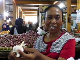 Harga Bawang Putih di Yogyakarta Turun