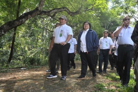 Menteri LHK Tinjau Kebun Sengon di Pulang Pisau