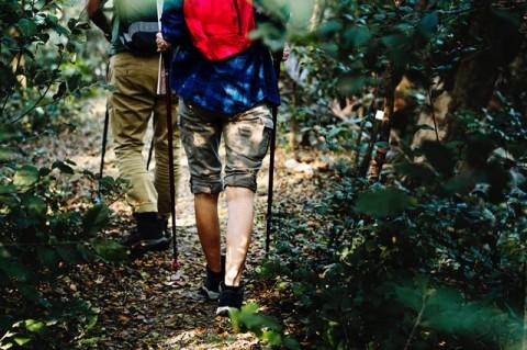 Tips Sehat Selama Mendaki Gunung Prau