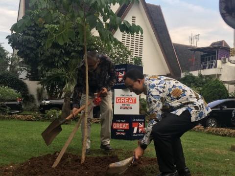Anies dan Dubes Inggris Tanam Pohon Peringati 70 Tahun Hubungan Diplomatik