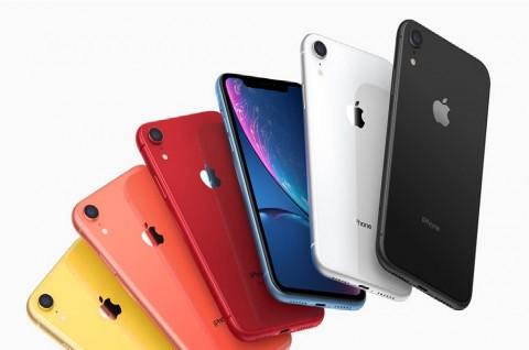 Penerus iPhone XR Bakal Punya Dua Warna Baru