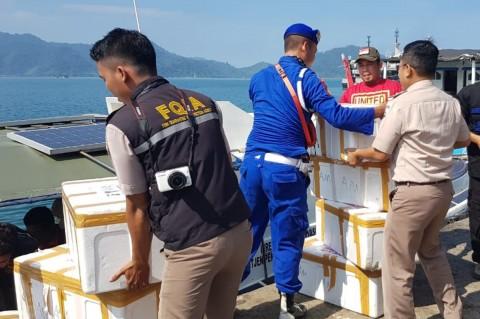 Penyelundupan Benih Lobster Senilai Rp30,8 Miliar Digagalkan
