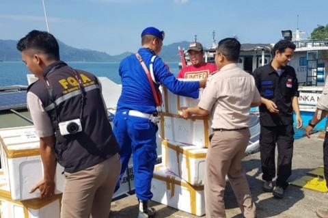 Digagalkan, Penyelundupan Benih Lobster Senilai Rp30,8 Miliar