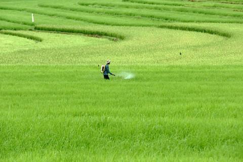 Komisi IV Sebut Banyak Sektor Pertanian yang Harus Dibenahi