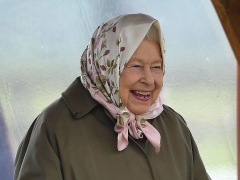Ratu Elizabeth Buka Lowongan Kerja Manajer Medsos