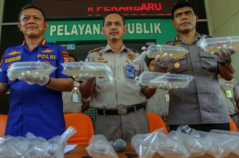 Polairud Riau Gagalkan Penyelundupan Baby Lobster Senilai Rp11,25 M