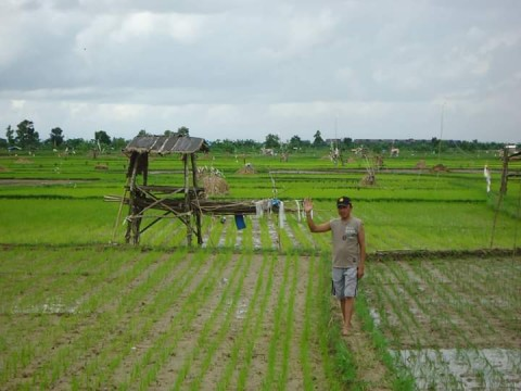 Pertanian Topang Pendapatan Rumah Tangga