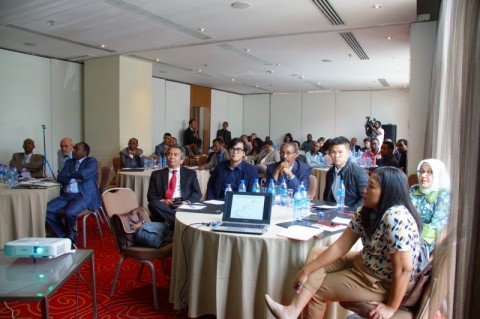 Wamenlu Ethiopia Nilai Indonesia sebagai Pelopor Demokrasi