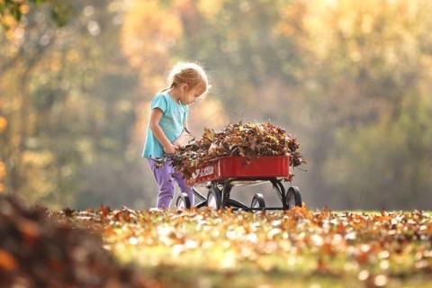 Mendeteksi Gangguan Obsesif Kompulsif Lewat Hobi Anak
