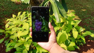 Menjajal Nokia 3.1 Plus yang Tahan Lama