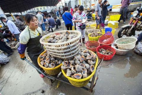 Bank Dunia Pertahankan Proyeksi Pertumbuhan Tiongkok