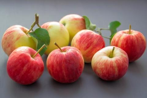 Tips Menyimpan Buah Apel